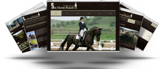 Website Redesign For Sea Horse Ranch